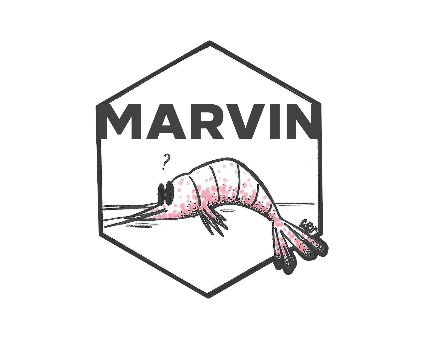 marvin rivista logo